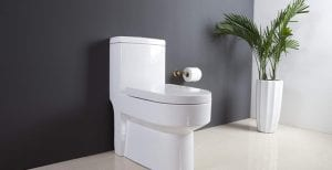 The Toilet Bowl Keeps Running? What's Going On? It Took Over 20 Years to Find Out!